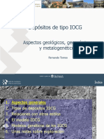 122256870-Iocg-Chile-2007