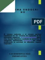 SISTEMA ENDOCRINO 1 1.pptx