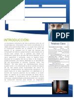Revision Bibliografica Plexo Lumbosacro