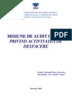 Misiune de Audit Intern Model 1