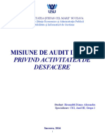 Misiune de Audit Intern Model 1