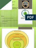 Clase II Gestion Ambiental