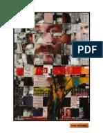 CHESTII NETIPARITE / UN RINOCER (DAN PERJOVSCHI & LUCIANA TAMAS)