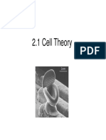 Cell Theory