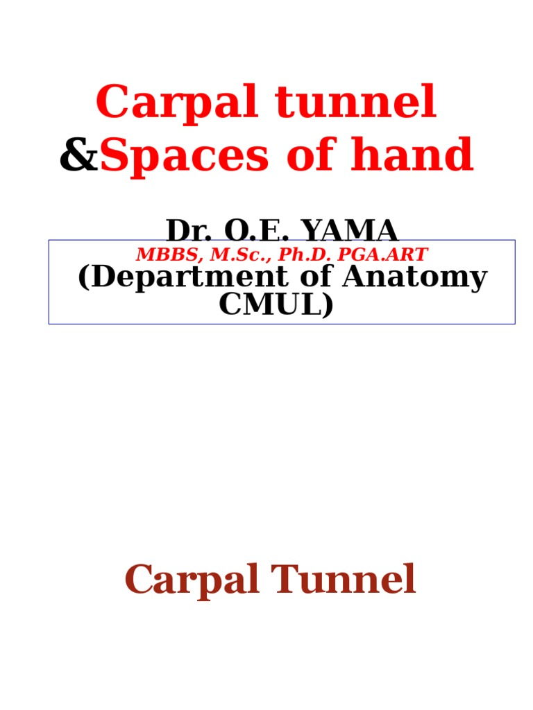 2016.Edited.lecture.mbbs.Carpal.tunnel.spaces.of.Hand | Finger | Hand