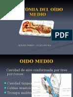 Anatomia Del Oido Medio Albani