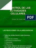 rev-enzimas-y-factores-1.ppt