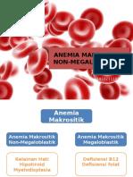 IDK CASE 2-Anemia Makrositik Non Megaoblastik (2)