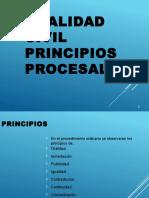 PRINCIPIOS DEL JUICIO ORAL CIVIL.pptx