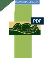 Informe Cecilia