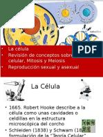Cap II La Célula (1)
