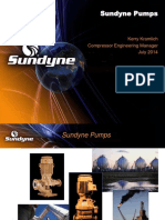 Sundyne High Speed Pump ( OH6)