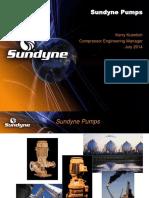 Sundyne High Speed Pump ( OH6)
