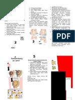 184654973-pamflet-anc.docx