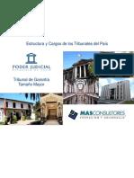 Juzgado_Garantia_Mayor BUENO HITOS CONTROL DETENCION.pdf