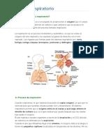 Sistema Respiratorio Prueba Diego 26-05-2016