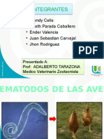 Expo Aves 2