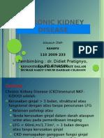 ckd-131029091541-phpapp01