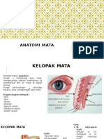 Ppt Anatomi Mata