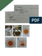 Praktikum Kimia Organik 7.3