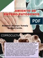 Aislamiento de Entero-patógenos