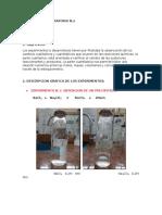 2do Informe de Laboratorio de Quimica
