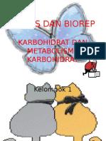 BIODAS DAN BIOREP 2.pptx