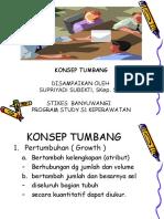KONSEP TUMBANG s1