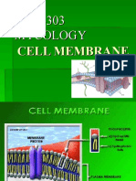 4303 Cell Membrane