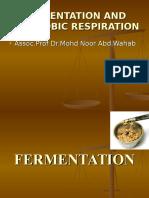 Anaerobic Fermentation