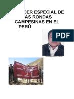 El Poder Especial Del Perù.