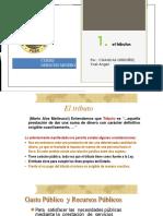 3° TEMA (TRIBUTACION Y TRANSACCION MINERA) DERECHO MINERO