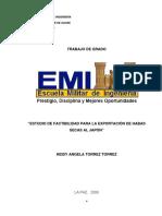 Proyecto de Factibilidad de Habas Secas Para Exportacion