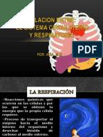 Relacionentreelsistemacirculatorioyrespiratorio 130617144925 Phpapp02 (1)