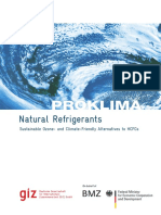 Natural Refrigerants-GIZ 2008