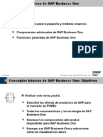 Conceptos Básicos de SAP