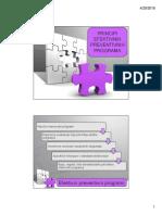 Pp 15 Principi Programa