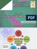 TEMA 9 Continuación Helicobacter Treponema Mycoplasma y Chlamydia