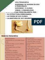 Diferencia Entre Dicotiledoneas y Monocotiledoneas. 2da. Clase