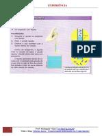 EXPERIMENTO ( 6º ANO)  - PRESSÃO ATMOSFERICA NAS MOLECULAS DA AGUA.pdf