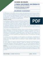 SEGUIRDAD CIUDADANA.docx