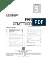 Principios Constitucionales.pdf