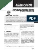 Penal Constitucional León