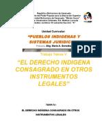 EL DERECHO INDÍGENA CONSAGRADO EN OTROS REVISADO Y CON PORTADA.docx