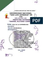 CICLO-DE-TRASNMISION-DE-ENFERMEDADES-FINAL.docx