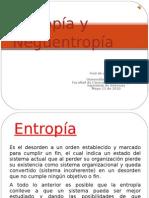 entropia - neguentropia