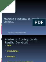 87912885 Anatomia Cirurgica Da Regiao Cervical2006para Alunos