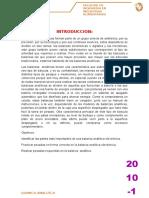 144676857 Balanza Analitica (2)