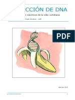 Extraccion de ADN - Platano