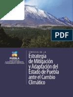Estrategia Puebla SSAOT